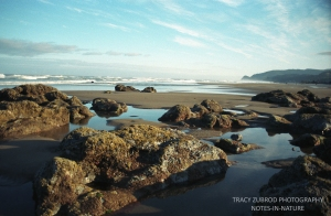 LINCOLN CITY OREGON