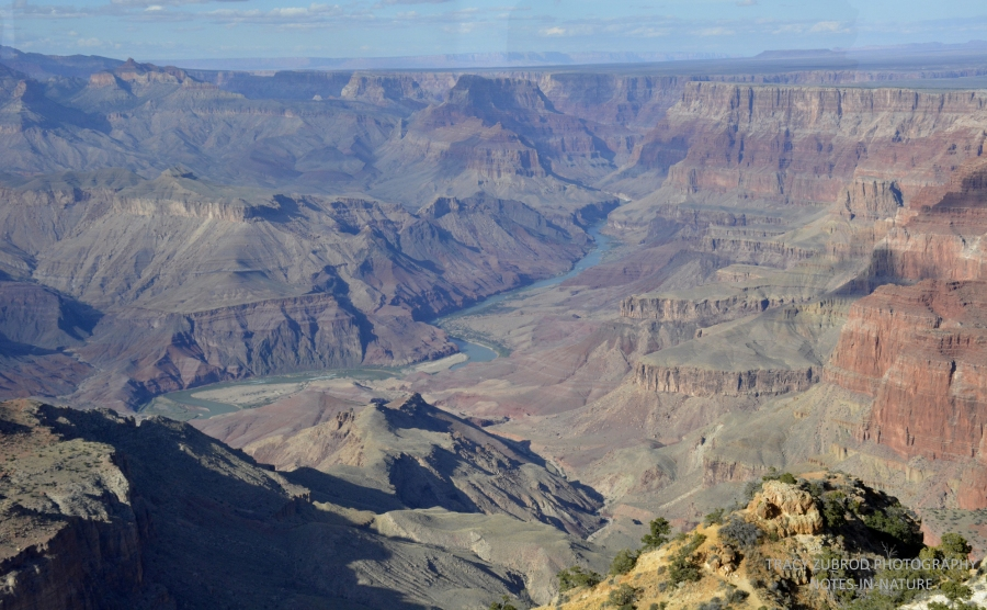 grand-canyon-and-the-colorado-river